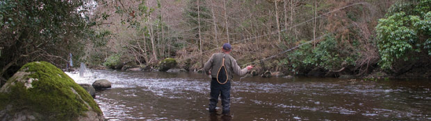 An Irish Anglers World