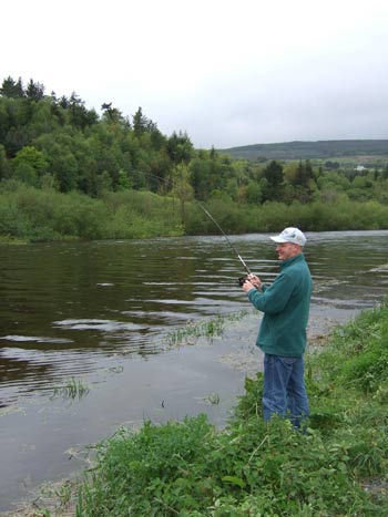 Playing a Shad, St. Mullins, Co. Carlow