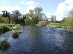 River Liffey, Newbridge, The Strand