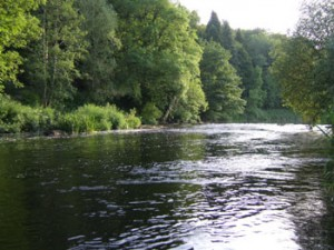 River Slaney, close to Clonegal, Co. Carlow