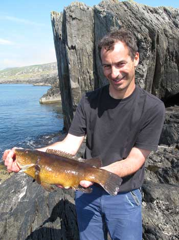 Roger with a fine Crow Head wrasse