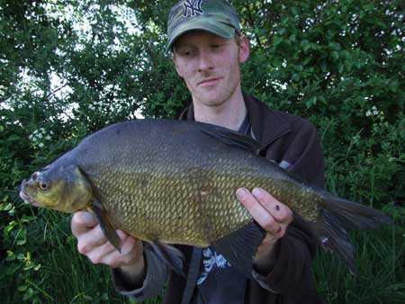 A Royal Canal bream