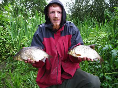 A brace of River Barrow hybrids