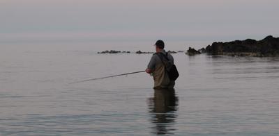 Surface lure fishing.