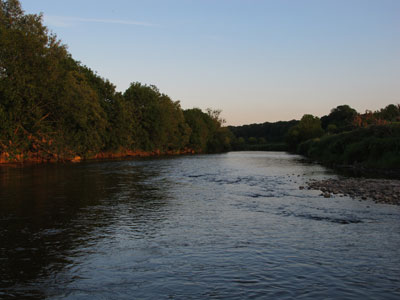 River Slaney above Enniscorthy, Co. Wexford