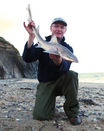 Smooth hound caught surf casting from a County Wicklow strand
