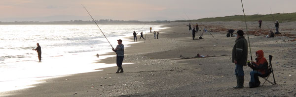Mackerel fishing, Rostoonstown, Co. Wexford.