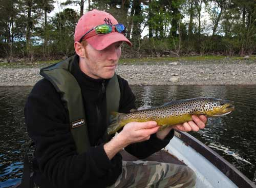 1.lb 12.oz wild brown trout, Roundwood, Co. Wicklow, Ireland.