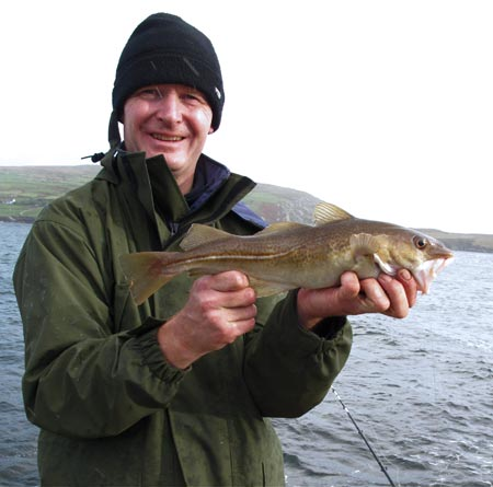 A typical Beara Peninsula codling circa October 2010.
