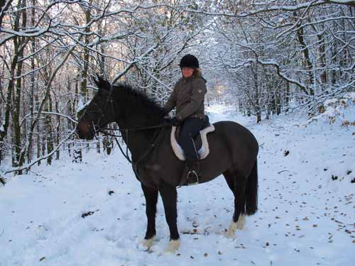 Mandy astride Dixie, Carrig Wood, Ballythomas Hill, Co. Wexford, Ireland.