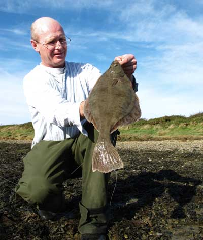 A big estuary flounder from a south county Wexford estuary, Ireland.