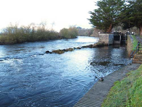 River Barrow below Goresbridge, Co. Kilkenny.