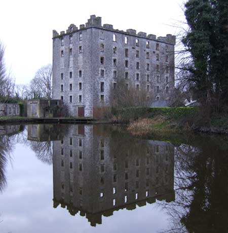 The old mill at Levittstown, Co. Kildare.