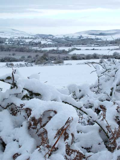 Looking west towards Tinahely, Snow at Ballythomas, Co. Wexford, Ireland, November 2010.