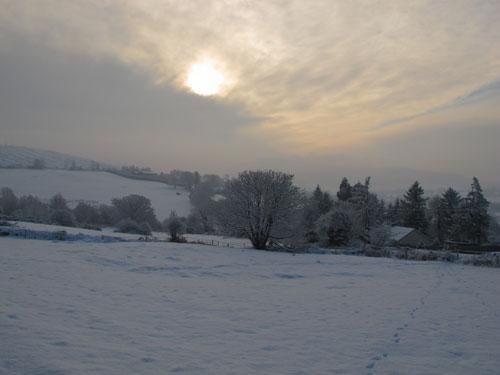 Winter scene, December 21st, 2010, Ballythomas, Co. Wexford.