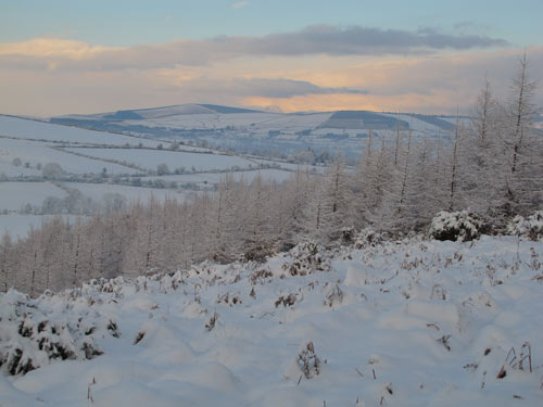View towards Tinahely from the viewing point, Carrig Wood, Ballythomas Hill, Co. Wexford.
