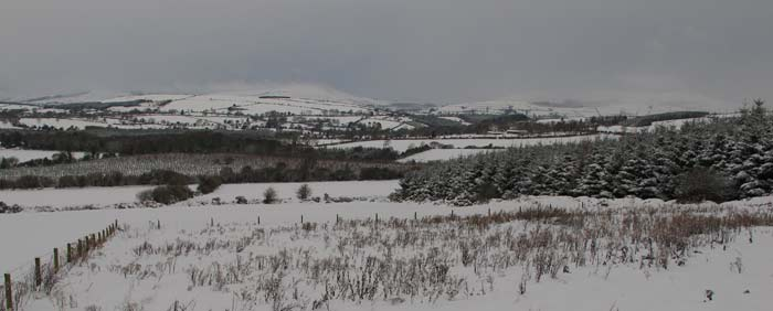 View from Ballythomas west towards Tinahely.