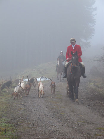 Out of the fog, Parkbridge Hunt, Co. Carlow.
