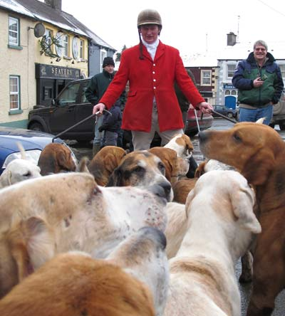 A huntsman and his hounds, boxing day, Tinahely, Co. Wicklow.