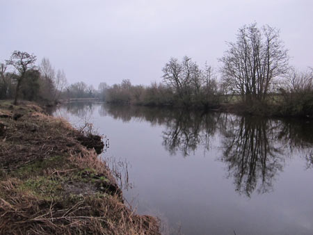 River Barrow in January between Carlow and Athy.