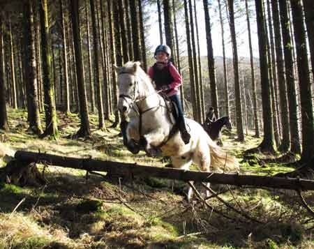 Erica and her green pony jump a log in Carrig wood.