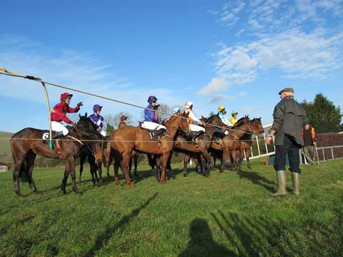 Lining up at the start, Shillelagh and District Point to Point, Fairwood Park, Tinahely, Co. Wicklow, Ireland.