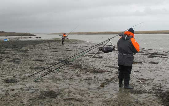 Estuary fishing for flounder, south county Wexford, Ireland.