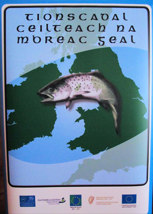 Celtic Sea Trout Project Logo.