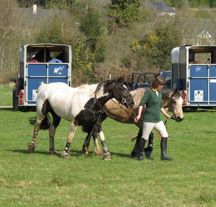 Leading the team, TRC Hunter Trials, Coolboy, Co. Wicklow, Ireland.
