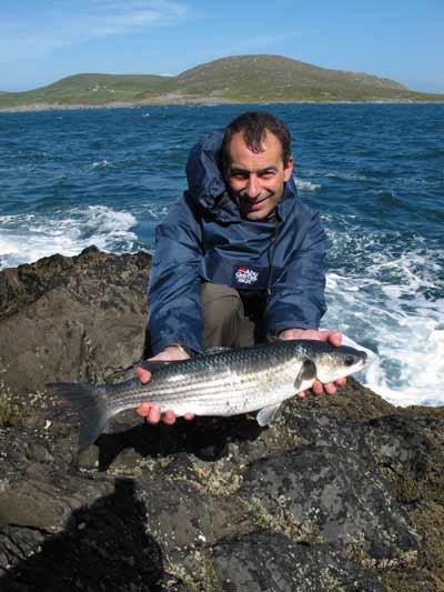 A specimen 5.lb 4.oz Beara Peninsula mullet for Roger Ball.