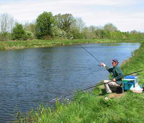 Playing a tench on the Royal Canal, Ireland.