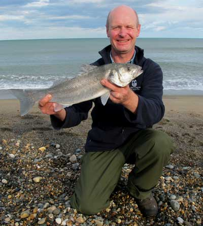 A nice early 2011 season bass from a south Wicklow strand.