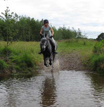 Into the water, Mandy and Cloon-Dara, TRC grounds,Coolboy, Co. Wicklow.
