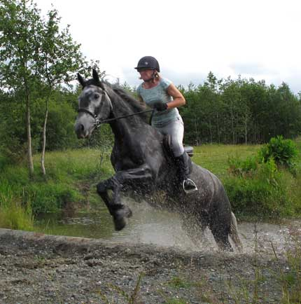 Mandy Hayden and her 15.2, five year old Connemara Cloon-Dara.