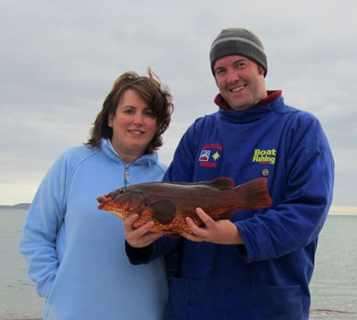UK tourist angler John Holmes from Blackpool with a 2.36 kg specimen ballan wrasse caught off Kilmore Quay.