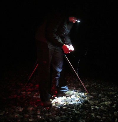 Baiting up, night fishing off a County Wicklow strand.