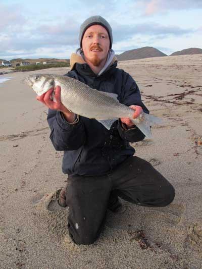 David Murphy with one of three Beara bass caught on an evening tide.