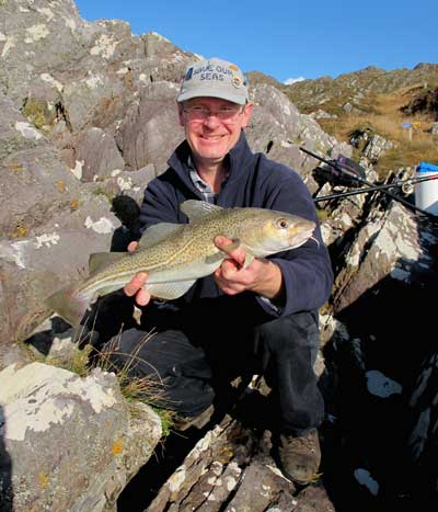 A cracking beara codling which fell for lugworm.