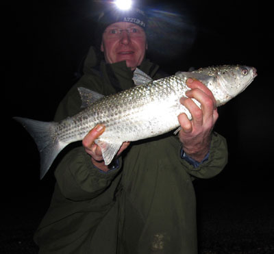 Beach caught grey mullet, on lugworm of all baits.