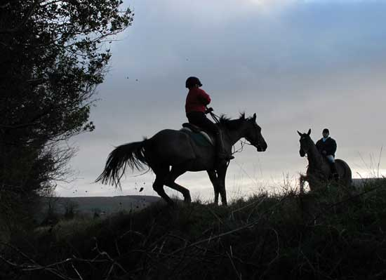 Life's a ditch, Wingfield Hunt, Dec' 2011.