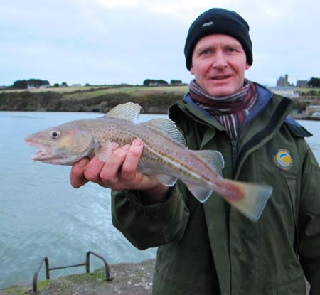Waterford estuary codling.