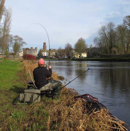 Casting the feeder, Athy, Co. Kildare.