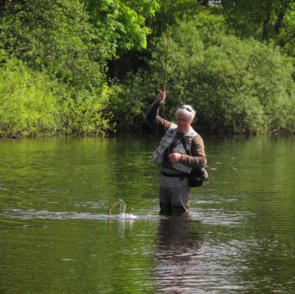 Liam Stenson playing a lively River Liffey brownie which came to a dry black gnat.
