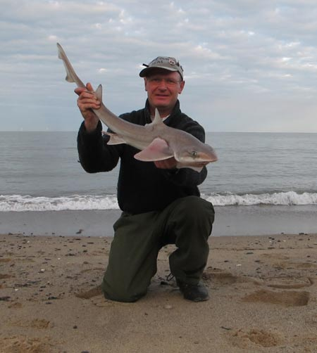 Surprise smooth hound from a Co. Wicklow strand, tempted by lugworm.