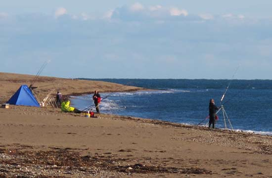 Sea fishing in Ireland, Surf casting in Co. Wexford.