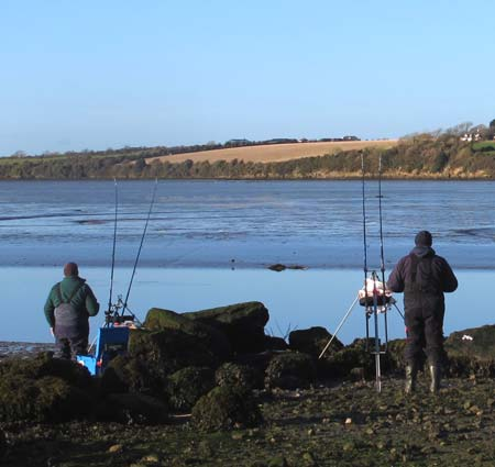 Sea fishing in Ireland for estuary flounder.