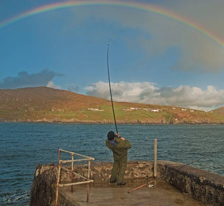 Pier fishing in Ireland. Leaning into a good codling.