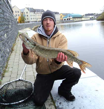Pike fishing in Ireland. A fine River Barrow pike landed by David Murphy on ledgered dead roach.