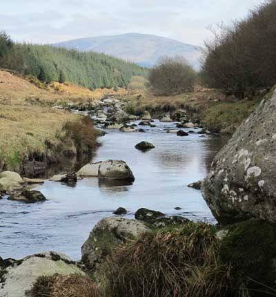 Upland stream in Co. Wicklow showing its bones.