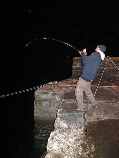 Fighting a pier hooked Beara Peninsula conger.